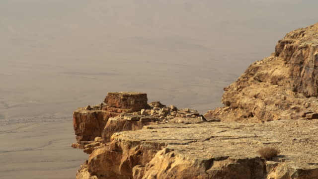 Royalty Free Stock Video Footage of a bird hopping on a cliff edge shot in Israel at 4k with Red.