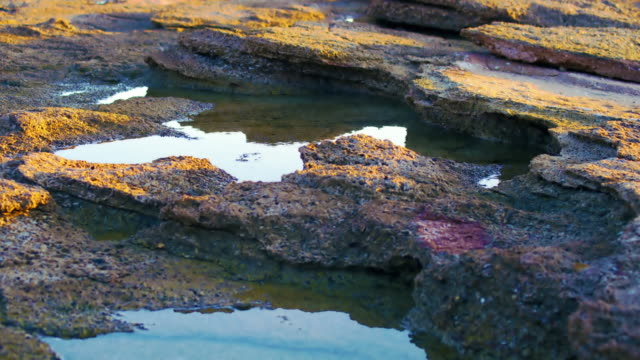 Royalty Free Stock Video Footage of tide pools at Dor Beach shot in Israel at 4k with Red.