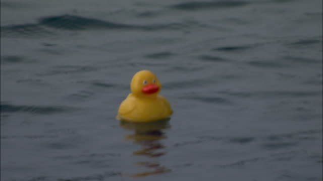 a rubber duck bobs in the ocean waves. available in hd. - duck stock videos & royalty-free footage