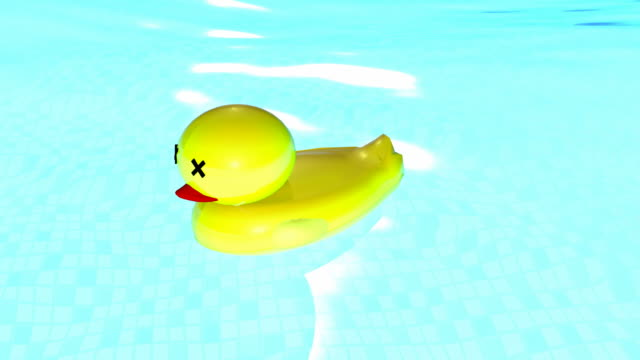 rubber duck | motion loop - anatra uccello acquatico video stock e b–roll
