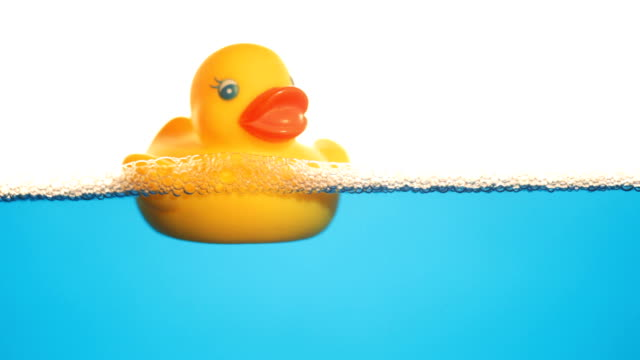 rubber duck. - duck stock videos & royalty-free footage