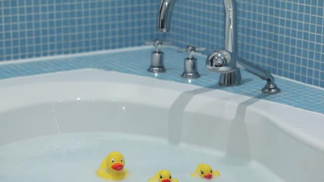 rubber ducks floating in bathtub - duck stock videos & royalty-free footage
