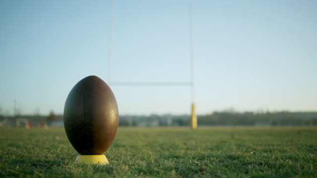 MS PAN Rugby ball on pitch / Graulhet, Midi-Pyrennees, France