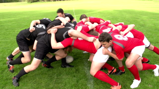 Rugby Scrum in a match - Live sports action