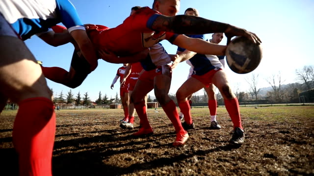 rugby team playing on the field - tackling stock videos and b-roll footage