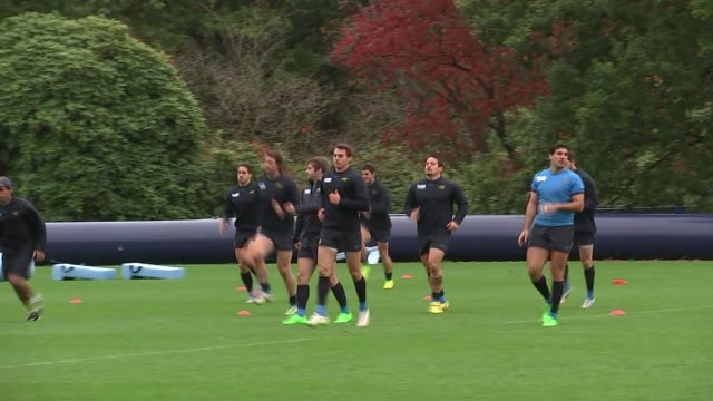 vídeos de stock, filmes e b-roll de rugby world cup 2015 argentina training ahead of semifinal match v australia gvs players standing and being briefed by coaching staff / gvs players... - semifinal
