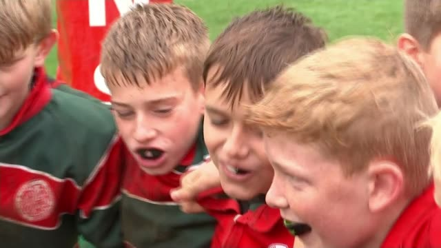 hertfordshire comprehensive school that produced four england rugby stars; england: hertfordshire: harpenden: st george's school: ext group of... - schoolboy stock videos & royalty-free footage