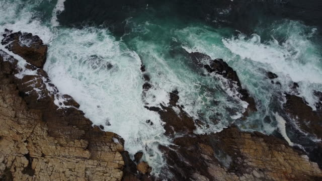 vídeos de stock e filmes b-roll de rugged coastline - south africa - penhasco caraterísticas do território