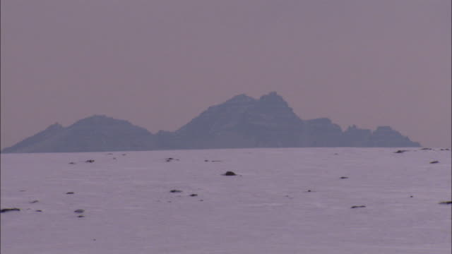 rugged mountains rise above a vast snowy plain in greenland. available in hd. - arctic stock videos and b-roll footage