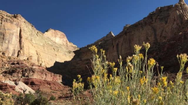 rugged nature landscape - san rafael swell stock videos and b-roll footage