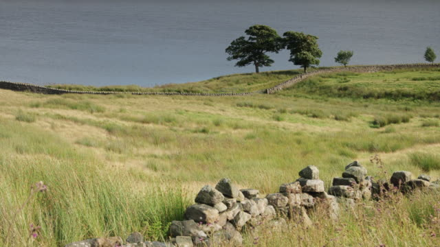 ruined wall by reservoir on breezy day - lancashire stock videos and b-roll footage