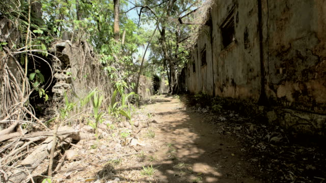 ruins of the penal colony of cayenne in the middle of rainorest. french guyana - old ruin stock videos and b-roll footage