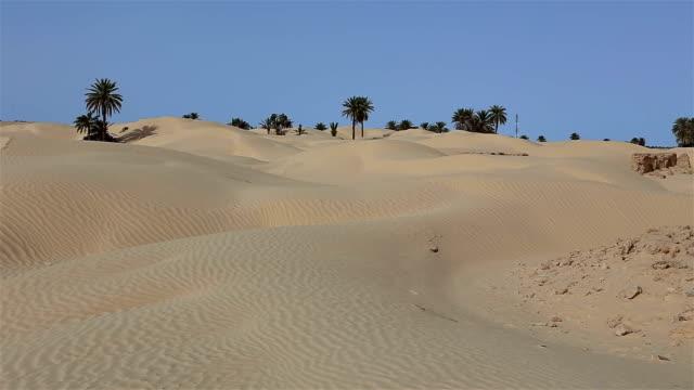 vídeos y material grabado en eventos de stock de ruinas de zaafrane un pueblo devorado por las arenas - oasis desierto
