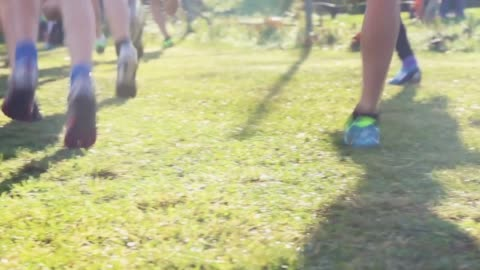 vídeos y material grabado en eventos de stock de runners feet running across the grass in a beautiful sunny day - hierba familia de la hierba