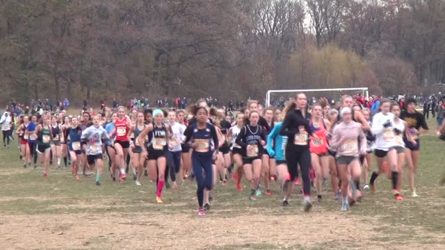 runners girls head to camera early in race - salmini stock videos and b-roll footage