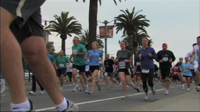 stockvideo's en b-roll-footage met runners in san francisco california in a race passing palm trees runners in san francisco with palm trees on september 15 2010 in san francisco... - salmini