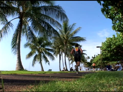 runners pass palm trees during a running race in honolulu runners past palm trees honolulu race on january 01 2010 - salmini stock videos and b-roll footage