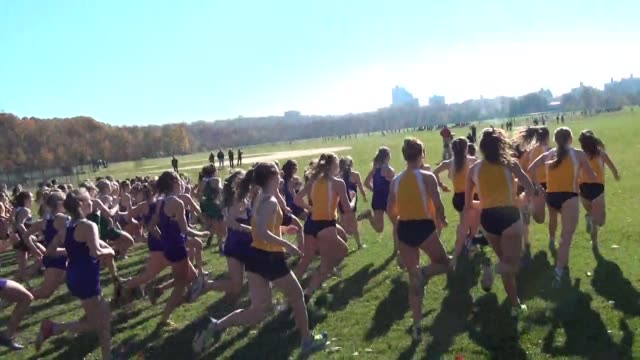 runners start cross country race head down course - salmini stock videos and b-roll footage