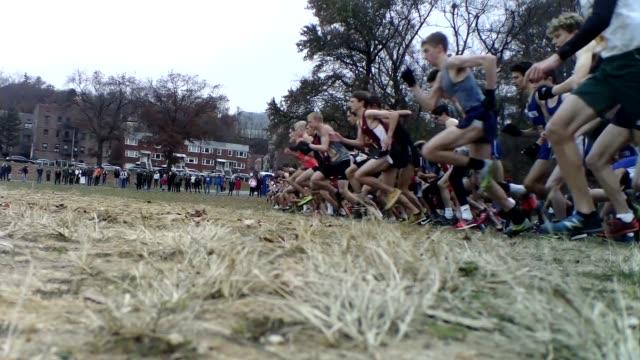 vidéos et rushes de runners start race, low angle - salmini