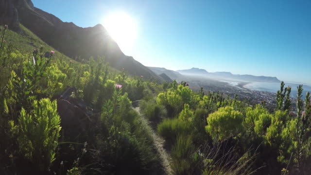 pov - running along a wilderness trail - steep stock videos & royalty-free footage