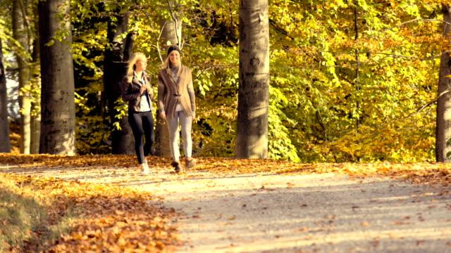 vídeos de stock e filmes b-roll de correr no parque no outono - focagem difusa