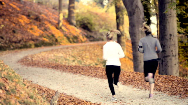 Running at park in autumn