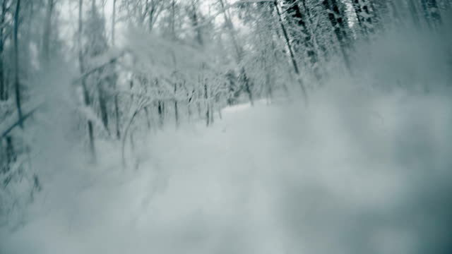 Running away in winter forest, personal perspective, escape, pov. Scared person
