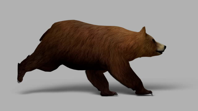 Running Bear with Alpha Channel (Loopable)