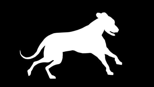 vídeos y material grabado en eventos de stock de funcionamiento perros (en bucle) - pata com garras