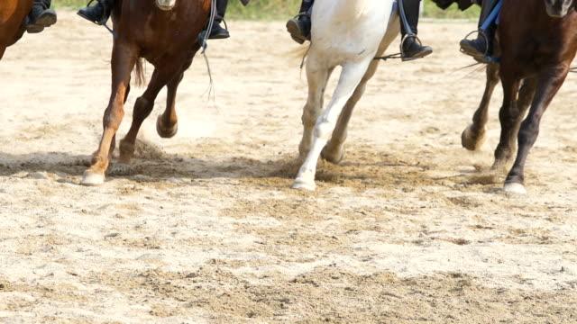 laufen des pferdes beine und hufe in zeitlupe - huf stock-videos und b-roll-filmmaterial