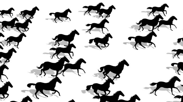 running horses silhouette - bucking stock videos & royalty-free footage