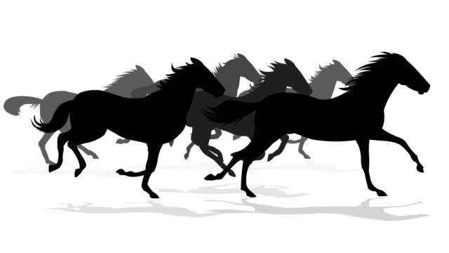 running horses silhouette - rodeo stock videos & royalty-free footage