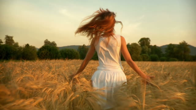 hd slow-motion: running in a wheat field - field stock videos & royalty-free footage