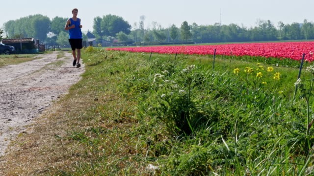 running in holland - northern europe stock videos & royalty-free footage