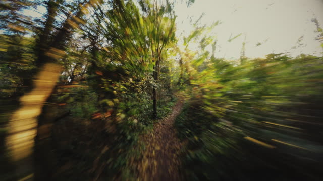running in point of view pov - mountain bike stock videos and b-roll footage