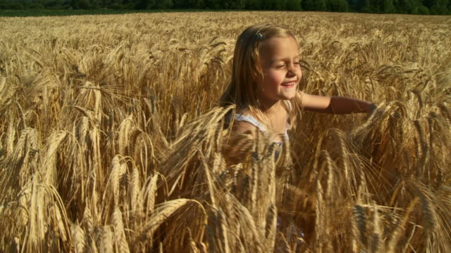 hd slow-motion: running in wheat - one girl only stock videos & royalty-free footage