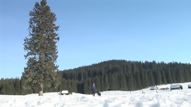 stockvideo's en b-roll-footage met hd: running inthe countryside - alleen één mid volwassen man