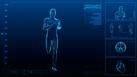 running man | digital interface | loopable - the human body stock videos & royalty-free footage