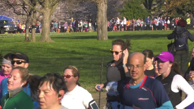 running race in dc mass on course - salmini stock videos & royalty-free footage