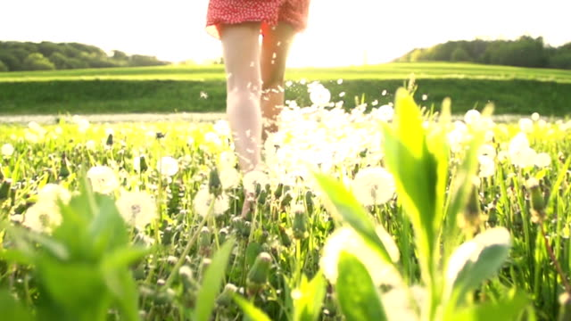 stockvideo's en b-roll-footage met hd super slow mo: running toward the sun in meadow - weide