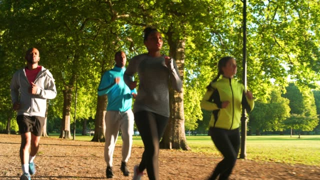laufen - public park stock-videos und b-roll-filmmaterial