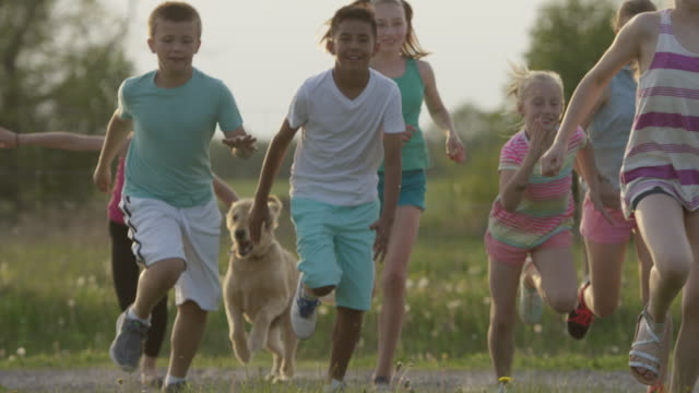 vídeos de stock e filmes b-roll de correr com o cão - 10 11 anos
