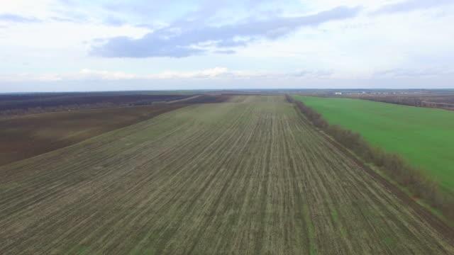 vídeos y material grabado en eventos de stock de antena zona rural en el otoño - campo arado