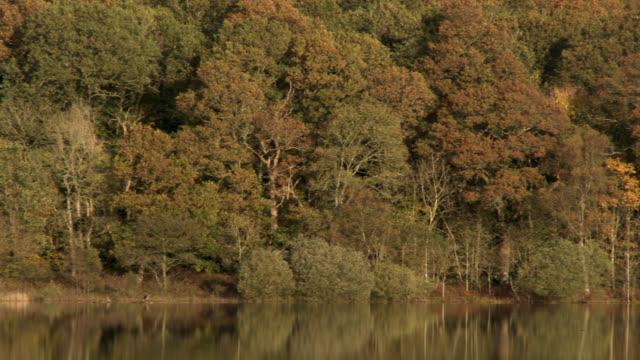 Rural autumn scene of a loch in Scotland