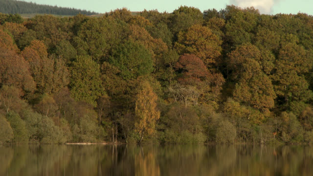 Rural autumn scene of a loch in Scotland