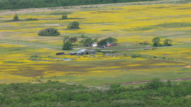 rural farm - bad condition stock videos & royalty-free footage