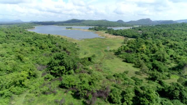 rural farmlands of sri lanka: 4k - sri lanka stock videos & royalty-free footage