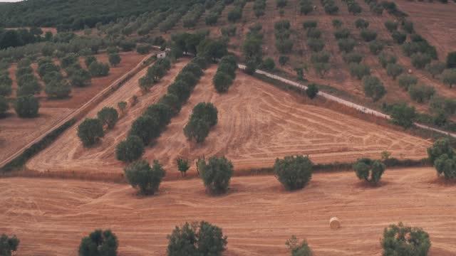 rural italian countryside outside rome, italy. aerial drone view - ラツィオ州点の映像素材/bロール