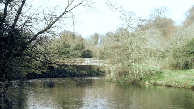 rural landsacpe - river lagan stock videos & royalty-free footage