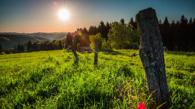 CRANE: Rural Landscape at Sunrise - Germany